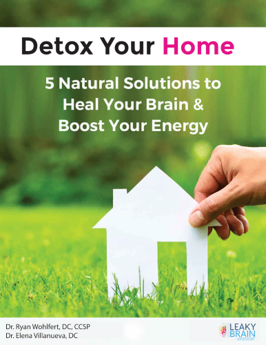 """image """"Detox Your Home"""" ebook"""
