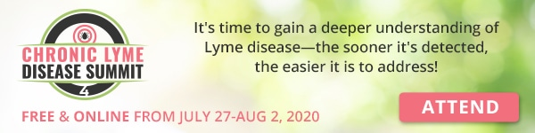 """Banner """"Attend Chronic Lyme Disease Summit 4"""""""
