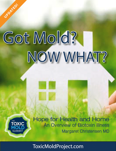 """Image """"Got Mold? Now What?"""" eBook"""
