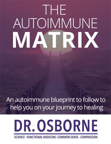 """Image """"The Autoimmune Matrix"""" eBook"""
