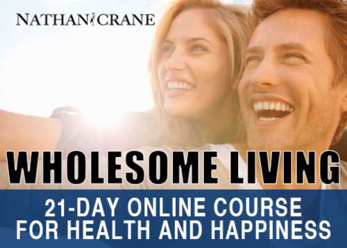 """Image """"Wholesome Living"""" video course"""