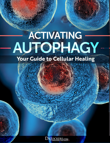 """""""Activating Autophagy: Your Guide to Cellular Healing"""" eGuide"""