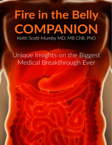 """""""Fire in the Belly Companion"""" eBook"""