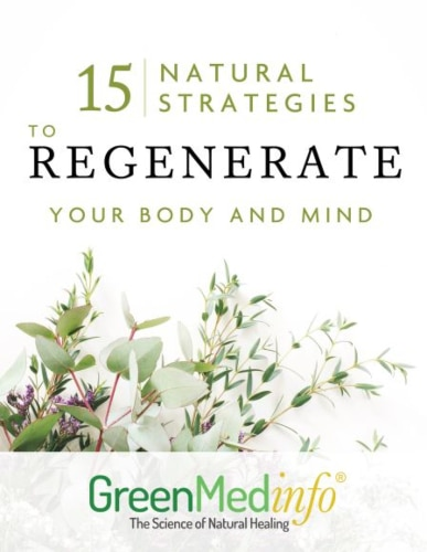 """""""15 Natural Strategies to Regenerate Your Body and Mind"""" Report"""