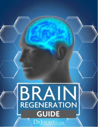Brain Regeneration Guide