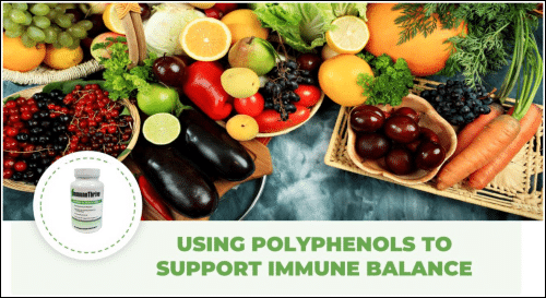 """Using Polyphenols for Immune Balance and Detox"" eBook"