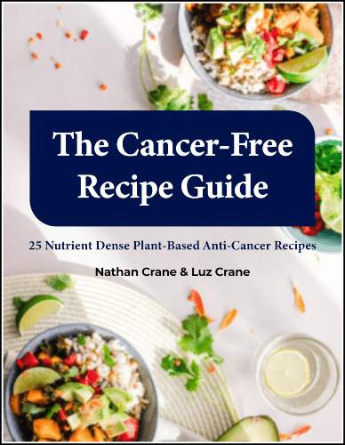 """""""The Cancer-Free Recipe Guide"""""""