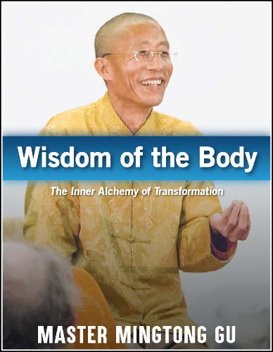 """Wisdom of the Body"" ebook"